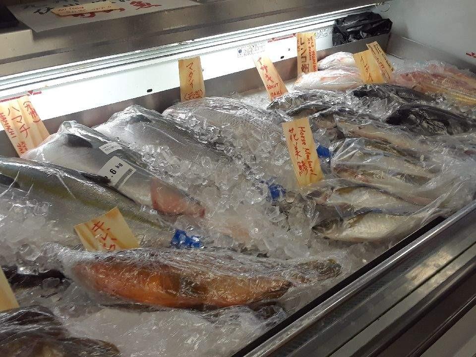 佐世保湾で採れた鮮魚